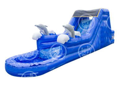 Dolphin Waterslide Rental