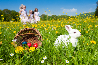 Easter Party Planning, Easter Party Ideas