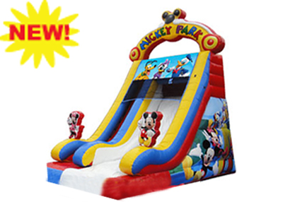 mickey mouse dry slide rental