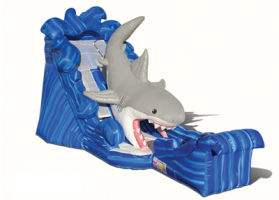 Great Shark Waterslide